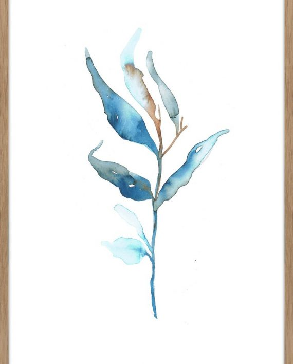 Aquarelle_branch